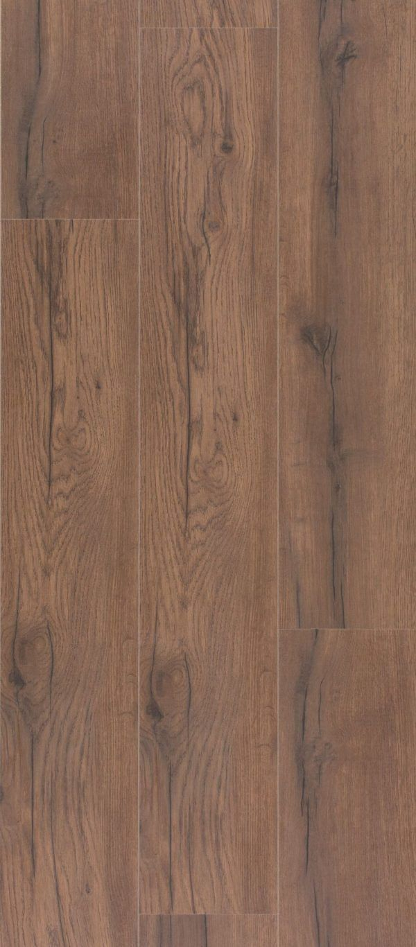 Dąb jesienny Fall Oak 1600-4291