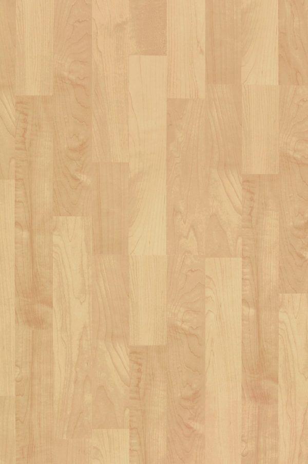 Klon Letni Summer Maple 1600-4213