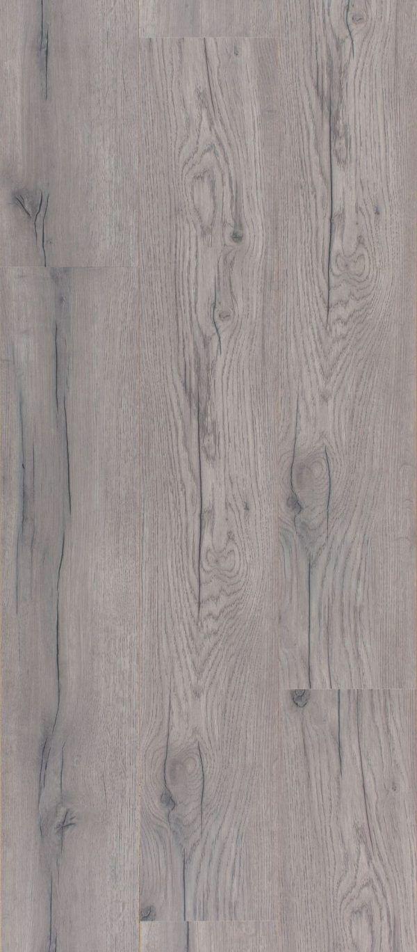 Dąb zimowy Winter Oak 1730-4331