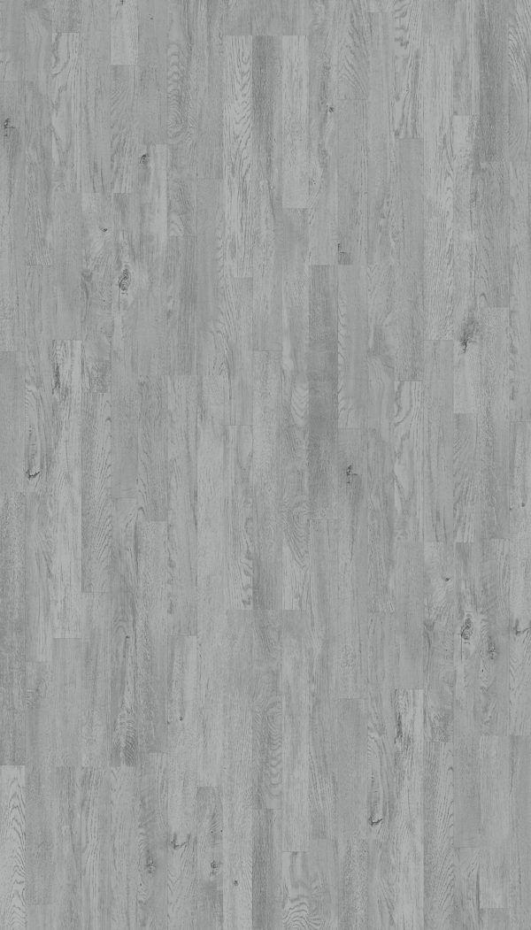 Dąb srebrny 1518079