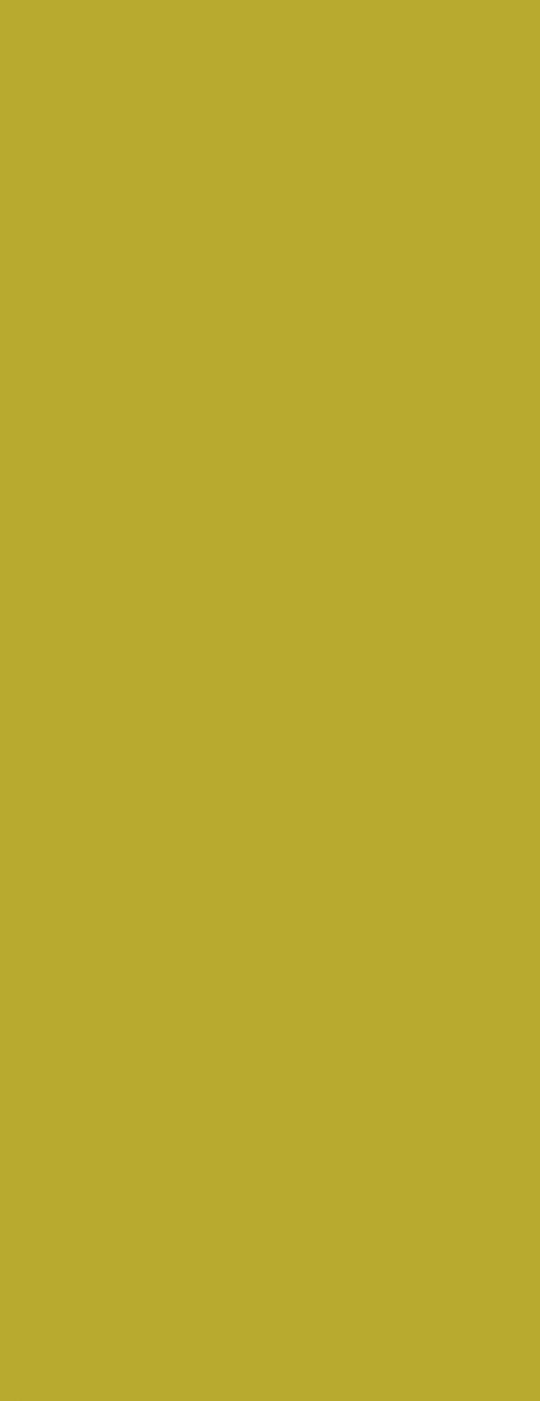 Kiwi matowy