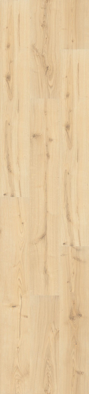 Ocean Oak