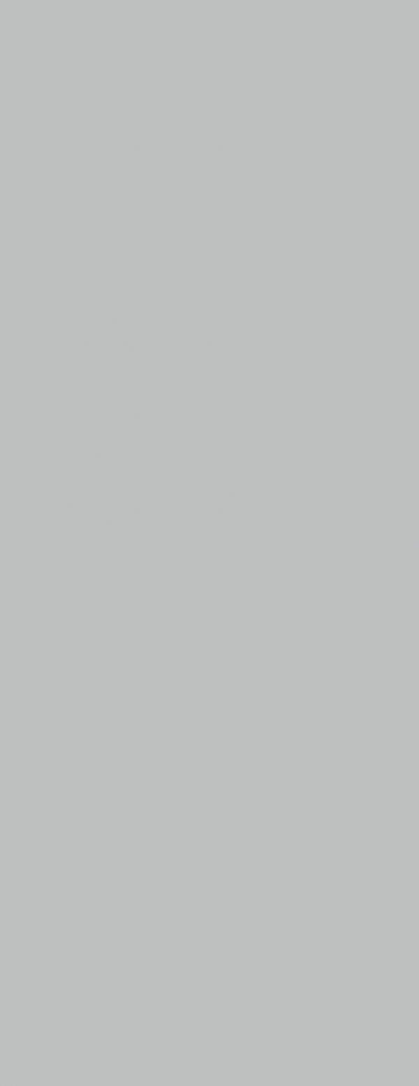 Silver blyszczacy
