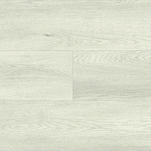 Dąb Kość Słoniowa 60579